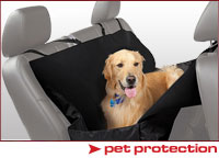 Automotive Pet Protection