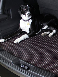 Rubbertite Floor Mats