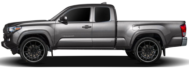 Toyota Tacoma Access Cab Lower Door Painted Body Side Moldings